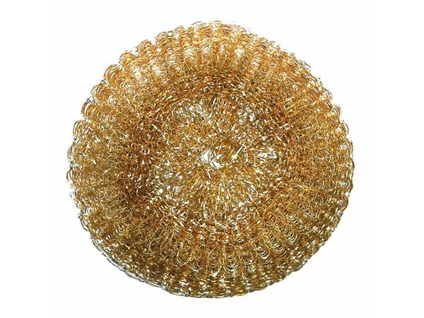 One piece of brass scourer on white background.